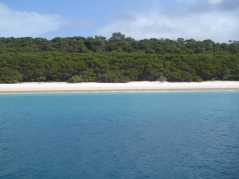 Beautiful Whitehaven Beach