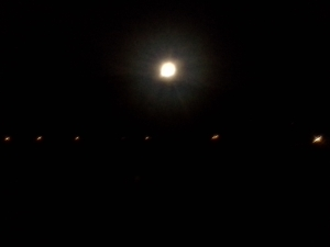 Full Moon Run