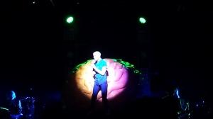 Neon Trees Concert