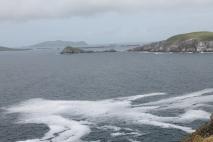 Skellig and Blasket Islands