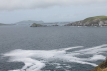 Skellig and Blasket Islands